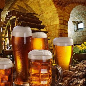 A Grande Rota da Cerveja
