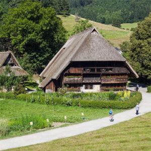 A Magia da Floresta Negra e Alsácia